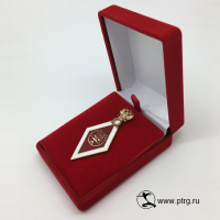 """Именной нагрудный знак """"ВЫПУСКНИК РГУП """" из позолоченной латуни"""